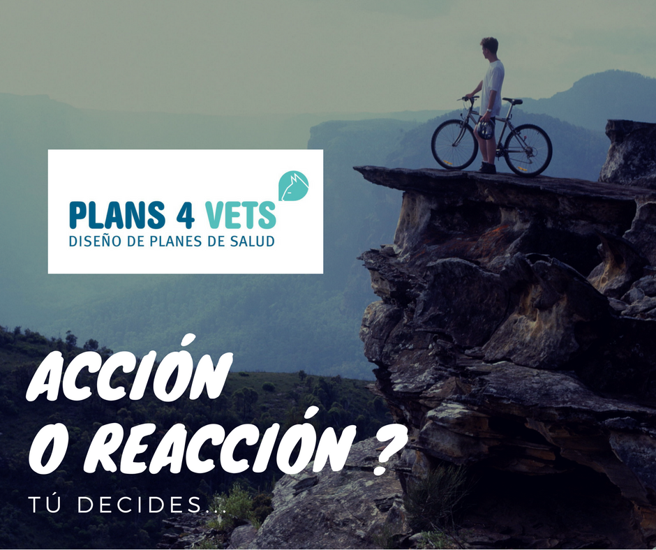 ACCIÓN O REACCIÓN -
